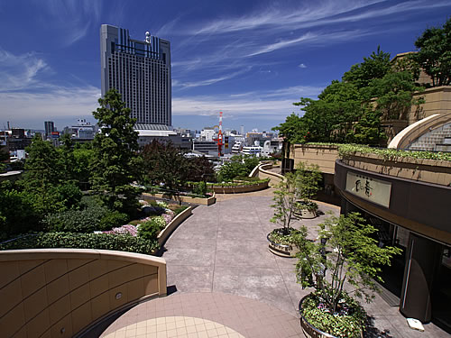 MEET MINI 試乗キャラバン in 大阪